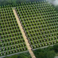 某地生态墓地设计施工图纸(含效果)