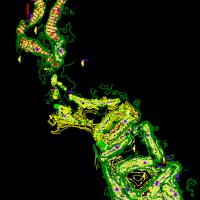 云南某高尔夫球场CAD设计图