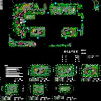 四川某大学医院心理卫生中心屋顶花园绿化设计方案平面